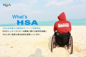 HSAの写真